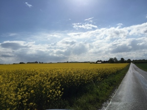 The Road to Bjerre, Denmark